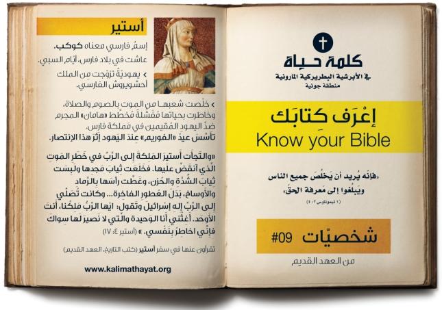 BibleFigure9